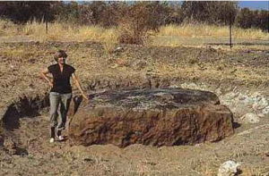 iron meteorite chondrite meteorites earth impact craters geology