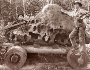 iron meteorite willamette tomanowos