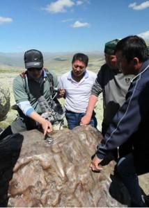 stony iron meteorites china aletai Altay Xinjiang chinese